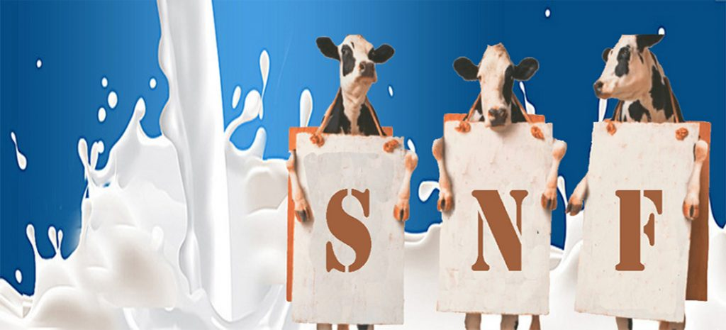 SNF in Milk Production