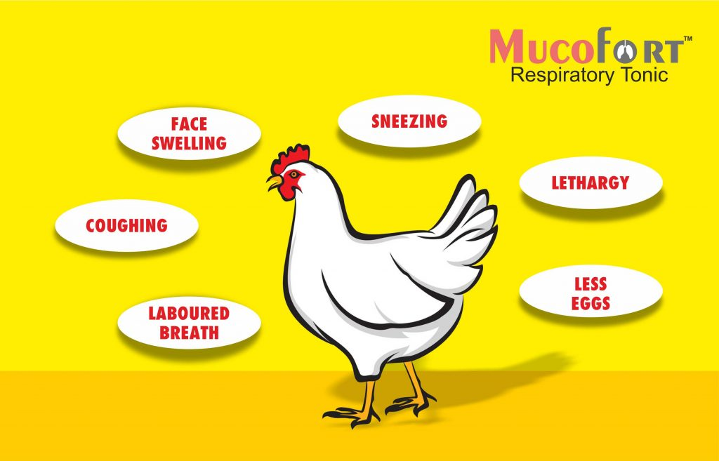 Risk Factors Associated with Respiratory System in Poultry
